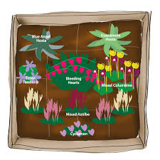 Flower Bed Plan - 3 colorful shade garden plans flower bulb crazy