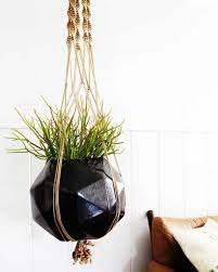 indoor hanging plants hanging planters and container garden ideas