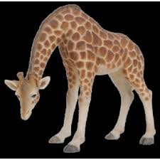 stooping giraffe real resin ornament by arts