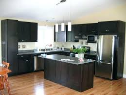Unfinished Cabinets San Diego Kitchen Cabinet Paint Kit Fascinating Home Refinishing 10 Judul