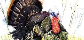 thanksgiving trivia pop quiz niceville