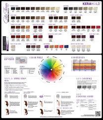Hair Color Wheel Chart Hair Color Sweis Inc Beauty Blog