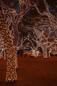 bright led outdoor christmas lights lights are bright in texas johnson city texas christmas lights