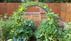 Small Vegetable Garden Design Ideas A Small Vegetable Garden Can Be Vertical Garden Design Ideas