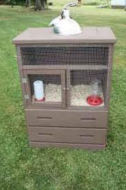 Cool Pets Rabbit Hutch 25 Best Bunny House U0026 Other Images On Pinterest Rabbit Cages
