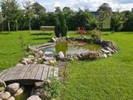 Backyard Pond Building A Fish Pond In Your Back Yard A How To Guide To Backyard Pond