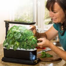 miracle gro aerogarden sprout plus with gourmet herbs seed pod kit