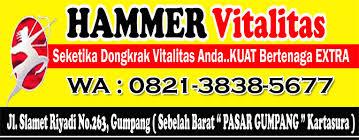 jual hammer of thor di solo 082138385677 antar gratis vimax