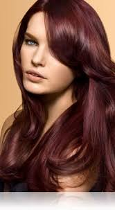 Light Burgundy Hair 51 Best Hair Styles To Try Images On Pinterest Hairstyles Hair