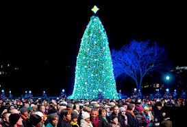 christmas trees and lights christmas trees around the world