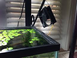 Diy Aquascape Unusual And Creative Diy Aquarium Just Craft U0026 Diy Projects