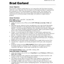Resume Example Objective Statement by Resume Objectives 8 Resume Template District Manager Sample
