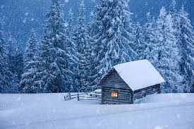 Winter Houses Images Nature Spruce Winter Snow Houses Seasons