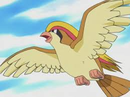 pidgeot car officer jenny pokémon wiki fandom powered by wikia