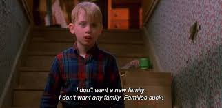 home alone you filthy animal quote home alone christmas quotes