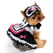 Pet Halloween Costumes Dogs 119 Costumes Pets Images Pet Costumes Costume