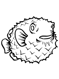 porcupine fish coloring free printable coloring pages