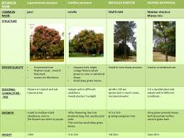 landscape types plants tree shrubs