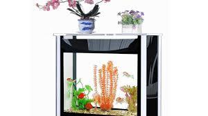 designer aquarium the world s easiest 30 gallon designer aquarium by joe chen