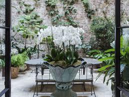 indoor garden ideas browse garden ideas to steal gardenista