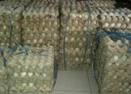 membuat telur asin berkualitas telur asin bakar surabaya 087855004286 supplier telur suplier