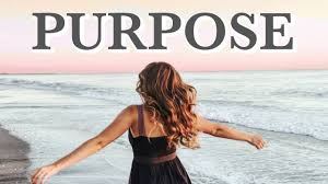 Challenge Purpose How To Find Your Purpose The Purpose Challenge