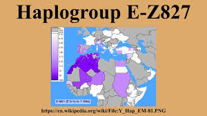 Haplogroup World Map by Haplogroup E Z827 Youtube