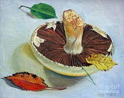 portobello mushroom art fine art america