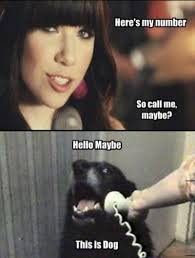 Maybe Meme - call me maybe meme explained pophangover