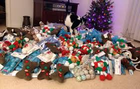 help us help shelter animals have some joy this christmas santa