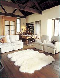 Area Rugs Ideas Living Room Area Rugs Ideas Interior Design
