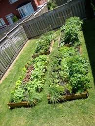 a word about the square foot gardening technique square foot