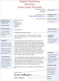 assistant cover letter digital marketing assistant cover letter exle cv plaza
