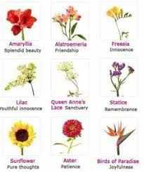 Types Meaning The Meaning Of Flowers By Urban Botanicals Pretty Flowers Urban