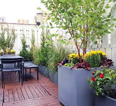 roof garden plants upper west side nyc roof garden terrace deck fence container