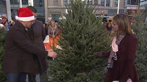 how to keep your tree alive through the holidays today