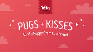 send a gram pugs kisses send a puppy gram for a chance to win american
