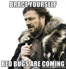 Bed Bug Meme - download bed bug meme super grove