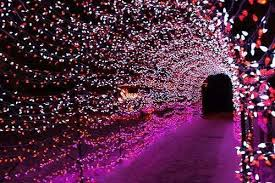 Indian Engagement Decoration Ideas Home Flower Petal Tunnel Mehndi Enterance Wedding Decor Ideas India