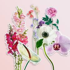flowers for 15 in season may flowers for your wedding brides