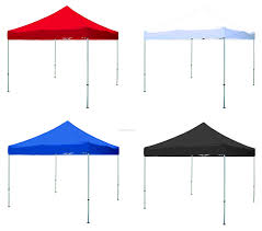 Rite Aid Home Design Double Awning Gazebo Interior Design Rite Aid Canopy Tent Regarding Rite Aid Canopy
