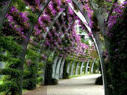 flower garden wallpaper beautiful pink u2013 best wallpaper download
