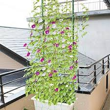 Garden Netting Trellis Ecotrellis Tn36w6l10g Heavy Duty Pe Plant Trellis Netting Green