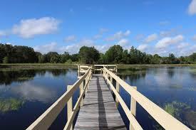 rv parks near disney world florida kissimmee south sun rv