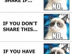 Facebook Likes Meme - grumpy cat meme weknowmemes