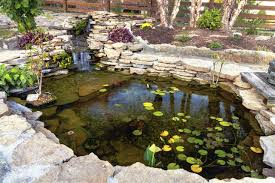 Pictures Of Backyard Ponds by Create Backyard Retreat With A Koi Pond U2013 Las Vegas Review Journal