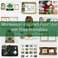 montessori tree printable montessori inspired plant activities with free printables every