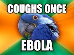 Paranoid Parrot Memes - livememe com paranoid parrot