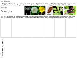 learning about seeds in third grade with free printables