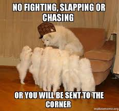 Fighting Memes - no fighting slapping or chasing or you will be sent to the corner